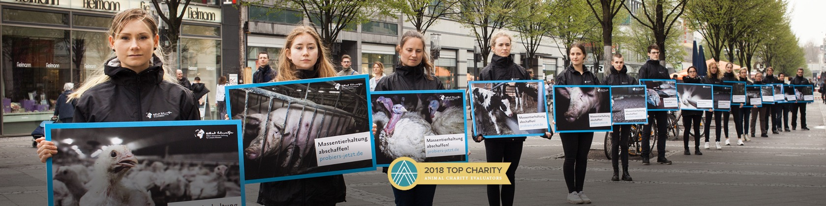 Sixteen animal activist line up holding photos of animals being slaughtered. Includes Animal Charity Evaluators 2018 Top Charity badge.